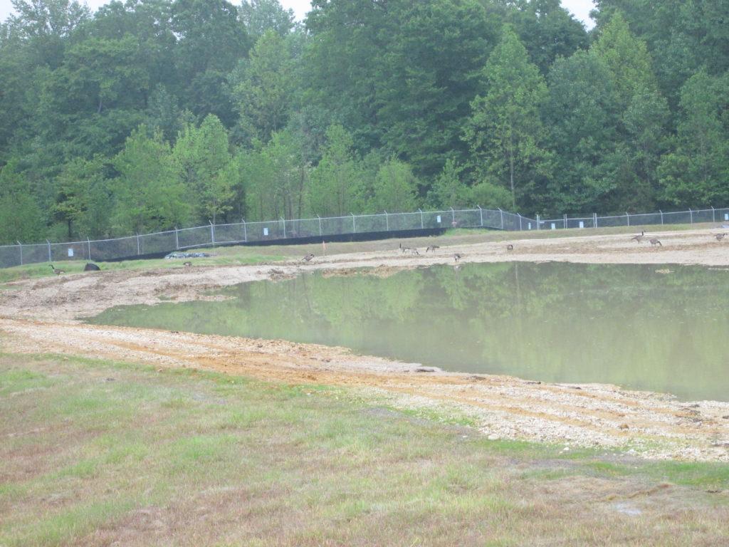 Sediment Pond at ACC Area Keys Site 5-18-2016 001